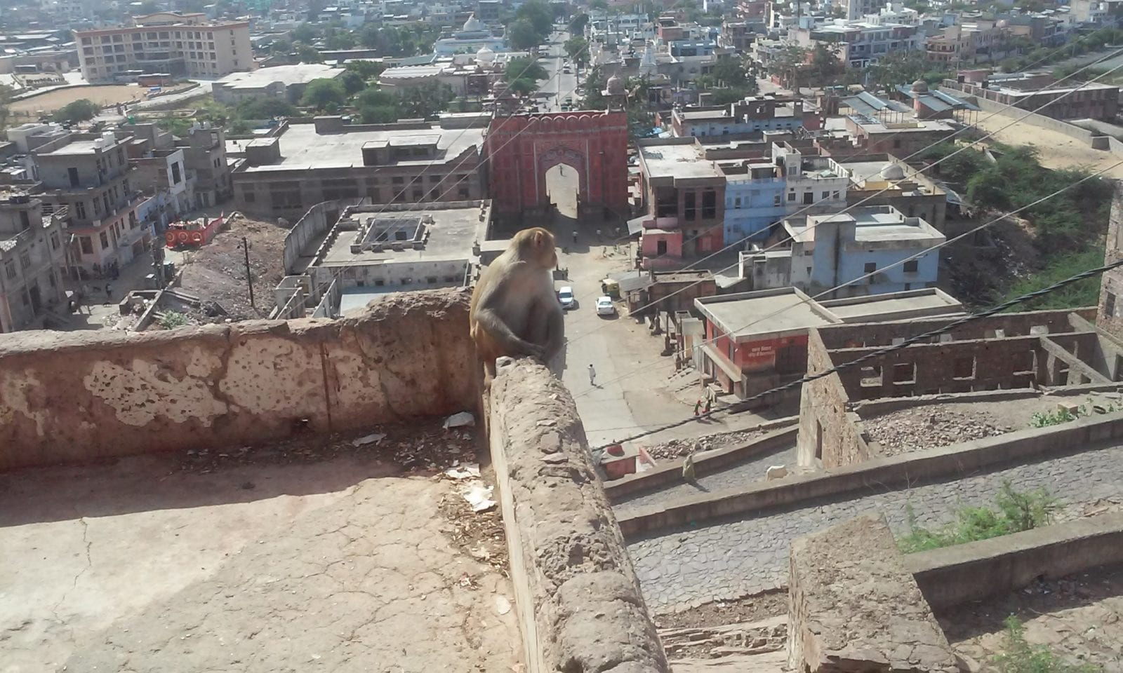 Backpacking in Rajasthan